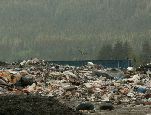 Address Juneau Landfill Issues