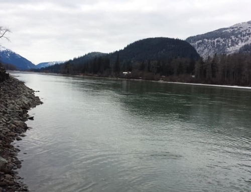 Transboundary Taku River Water Quality Sampling Project